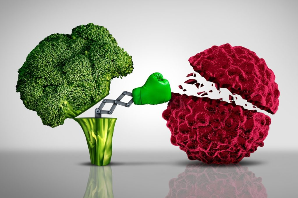 Ernährung, Vitamine, Viren, bakterielle Infekte, Immunsystem